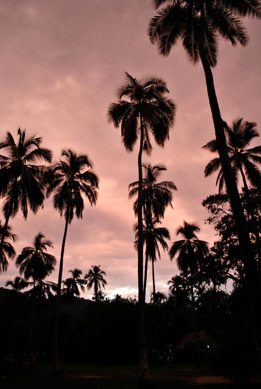 tayronapark-dusk-colombia